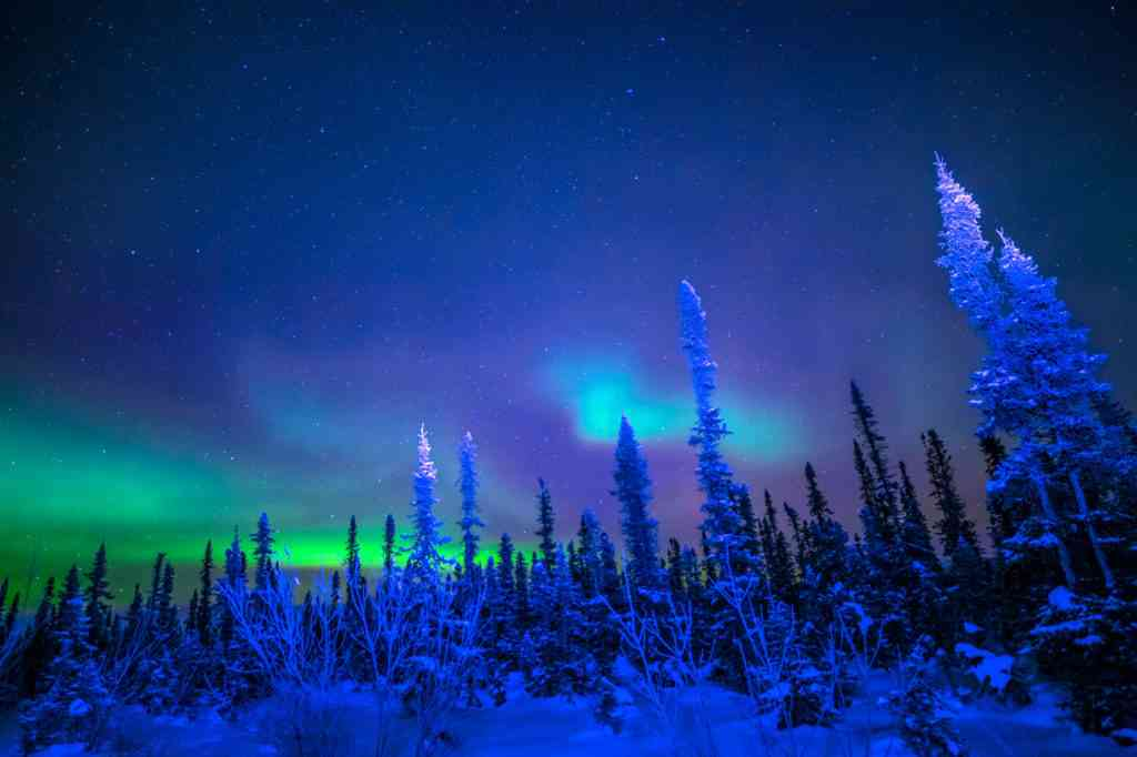 northern lights in Iceland, best Christmas vacations for families
