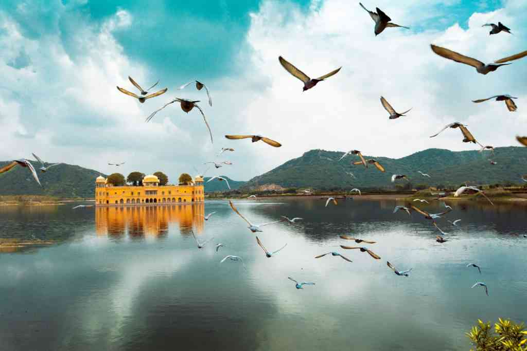 Best things to do in Jaipur with kids - Jal Mahal