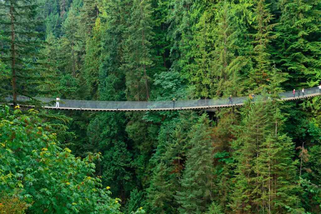 Capilano Suspension Bridge in Vancouver, Canada.