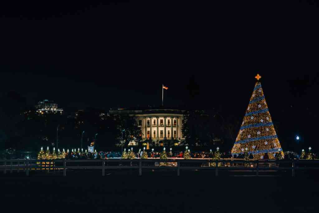The White House and National Christmas Tree at night, in Washington, DC.