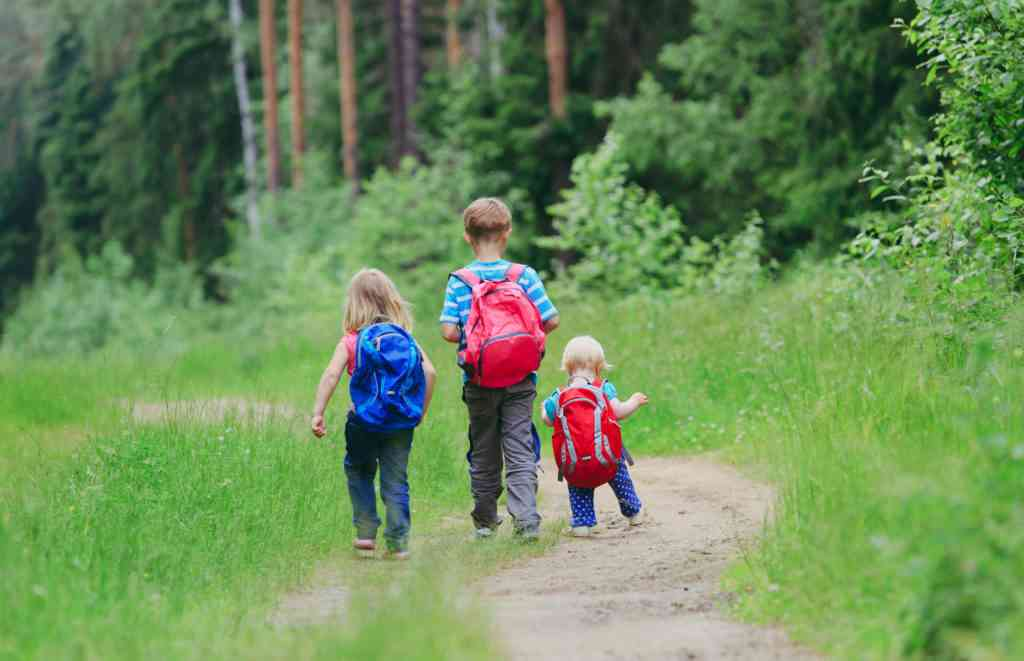 kids and toddlers carrying backpack on hiking trail